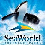 SeaWorld.com