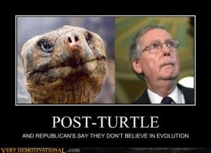 demotivational_posters_post_turtle