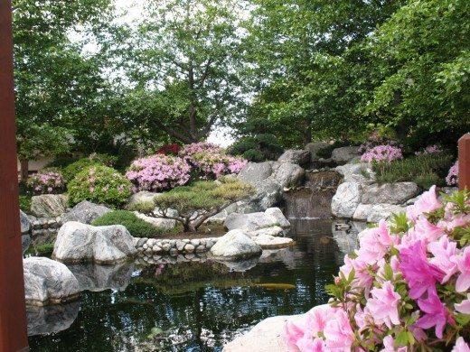 San diego for free japanese friendship garden 3rd for Japanese friendship garden san jose koi fish