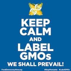 keep calm gmo