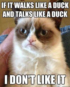 duckmeme