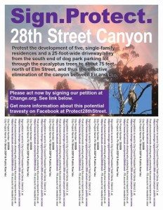 protect 28th street canyon