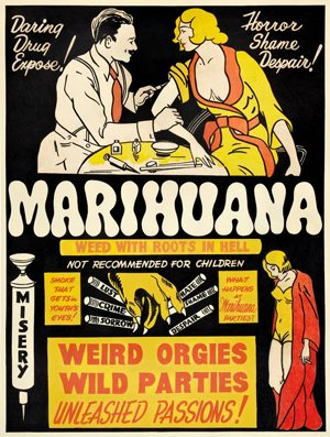 marijuanamadness1