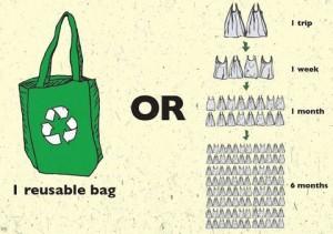 plastic bags (1)