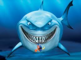 shark v nemo