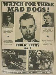 wanted mad dogs