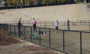 Temporary dog park