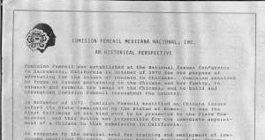 Comision Femenil Mexicana Nacional - An Historical Perspective