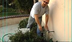 Home Plumbing Inspections
