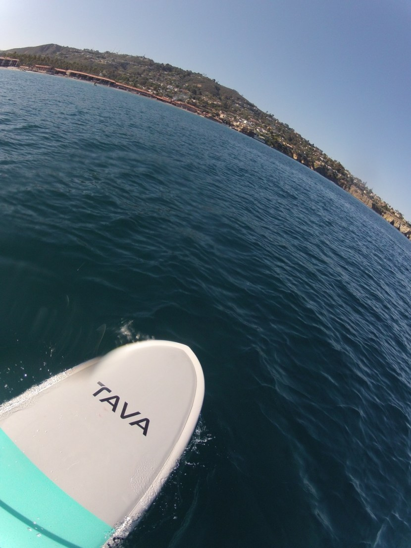 Paddleboarding from La Jolla Shores to La Jolla Cove, sup rental san diego, sup rentals san diego, stand up paddle board rental san diego, stand up paddle board san diego, paddle board rental san diego, san diego sup, stand up paddling san diego, san diego paddle board rentals, sup yoga san diego, paddle board san diego, san diego paddle board, stand up paddle boarding san diego, sup san diego, paddle boarding in san diego, paddleboards for sale san diego, paddle board yoga san diego, san diego paddle boarding, paddle board lessons san diego, paddle boarding lessons san diego, liberty station rentals, kayak rentals san diego, paddle boarding coronado, kayak rentals in san diego, kayak rentals mission bay, san diego kayak rentals, sup deliveries, sup delivery, mission bay paddleboard delivery, deliver kayaks, san diego sup events, sup team building events, corporate events san diego