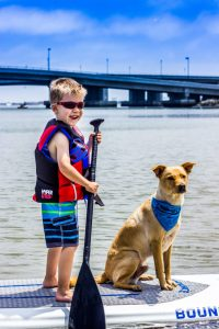 paddle boarding san diego, sup rental, san diego paddle boarding, san diego paddle board, stand up paddle board san diego, paddle board san diego, stand up paddle boarding san diego, san diego kayak rentals, kayak rentals san diego, paddleboard lessons, paddle board rental san diego, san diego paddle board rentals, sup yoga, sup san diego, Sup pups, Sup pups san diego, San diego sup yoga, Sup lesson san diego, Where to paddleboard with your dog , san diego paddleboard lessons, Sup rental san diego, La jolla cove paddleboarding, stand up paddle board lessons san diego, point loma paddleboard rentals, liberty station sup rentals