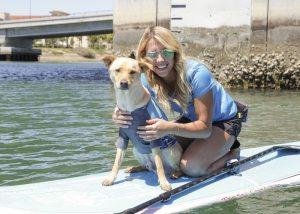 SUP Pups San Diego Southern California