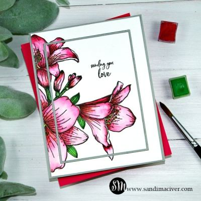 NEW VIDEO – Arteza Watercolor paint and paper