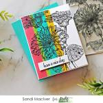 image of a hand made greeting card using the Picket Fence Studios Wild Daisies stamp set and the color blocking technique