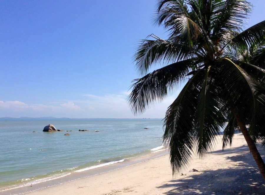 Palm tree on a deserted beach reasons to visit malaysia