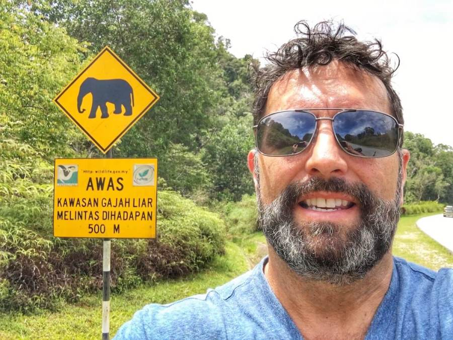 Mark with elephant crossing sign