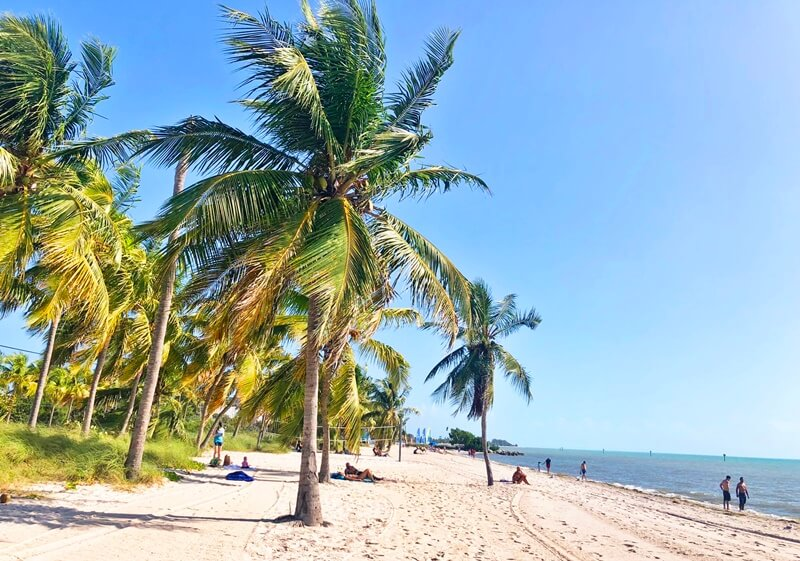 Key West, Florida. Wide beach with palm trees: reasons to move to another country.
