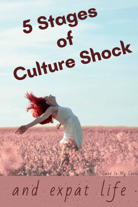 culture shock pin