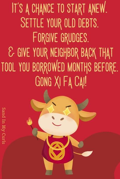 funny chinese new year quote for friends