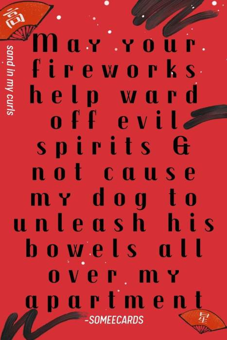 quote about fireworks scaring dogs on chinese new year