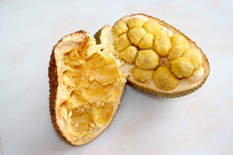 open cempedak fruit