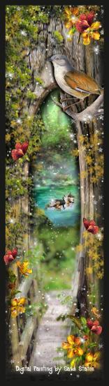 Fantasy Wonderland