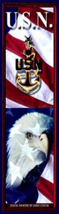 Patriotic U.S.N.
