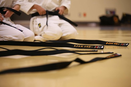 black-belt/pixabay.com