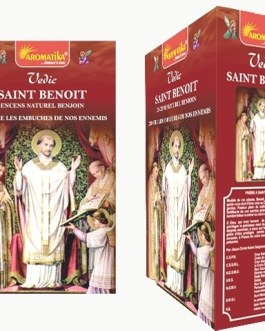 Encens Masala Vedic SAINT-BENOIT 15g
