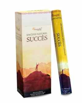 SUCCES AROMATIKA HEXA
