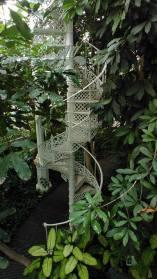 botanische tuin serre 2