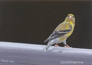 © Judy Lalingo, The Goldfinch 360, 2.5 x 3.5 acrylic on panel