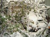 snowstorm7