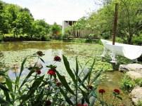 Garten beim paper dome