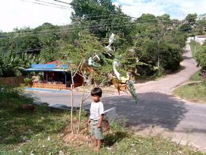 The village Christmasdecor