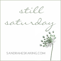 Sandra Heska King - Still Saturday