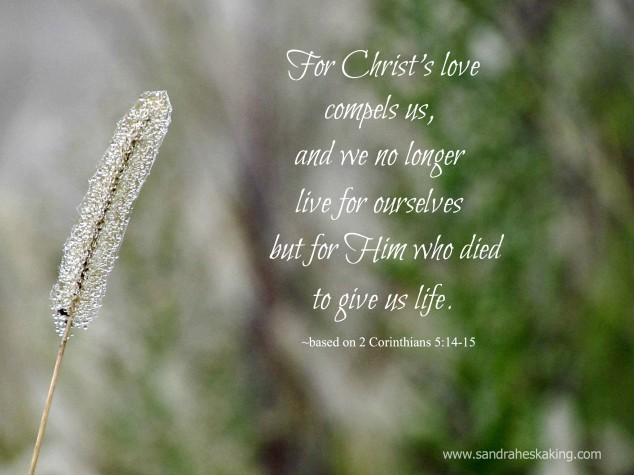 Image result for the love of christ compels us