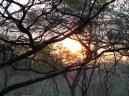 Crepúsculo larense, La Coposa, Edo. Lara