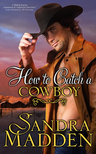 How_to_Catch_a_Cowboy