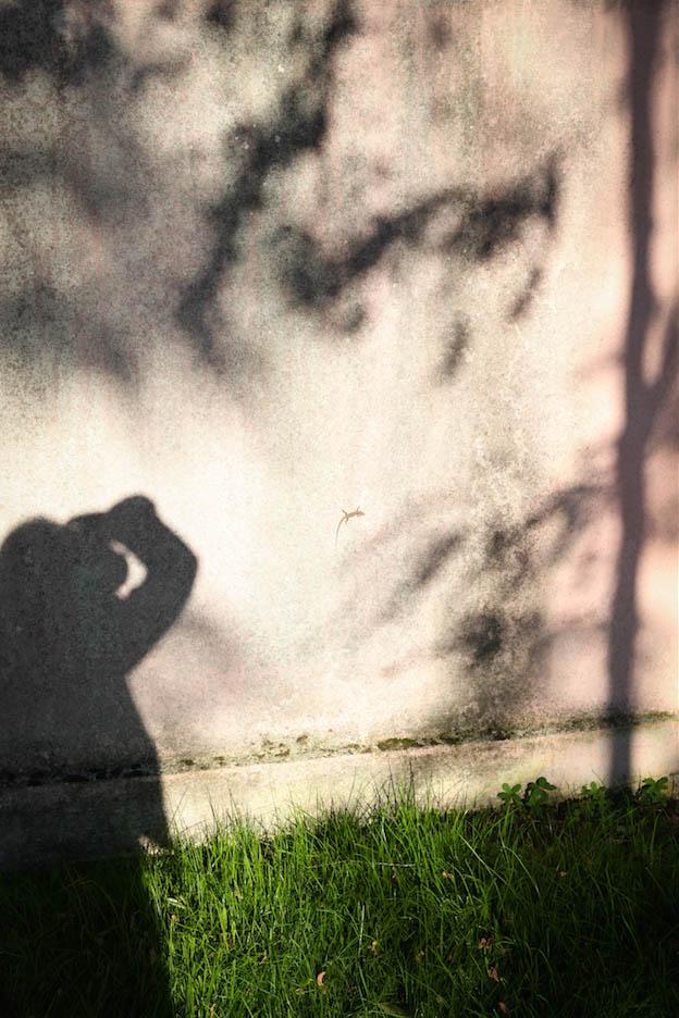 portrait photographique d'ombre