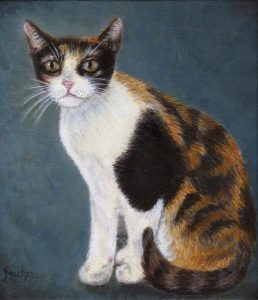 cat pet portait artist