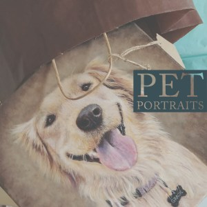 photo realistic pet portraits