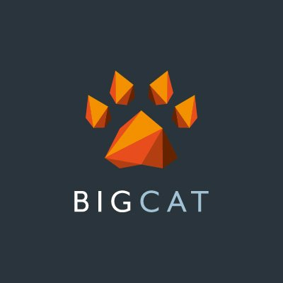 BIG CAT AGENCY