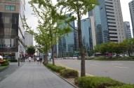 Seulas centrs 5