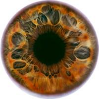 L'occhio galattico