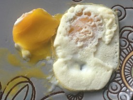 model2-egg1-3