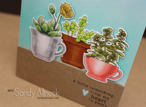 Sandy Allnock Succulents Copic2