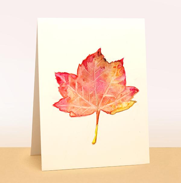 yupo wc leaf