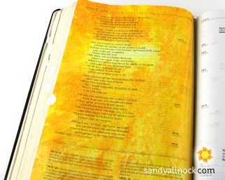 Sandy Allnock Bible Journal I know Full Well