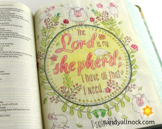 Sandy Allnock Bible Journal Lord my Shepherd